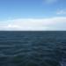 やっぱり海は怖いです オープン・ウォーター